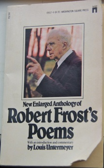 Frost-Book-Cover