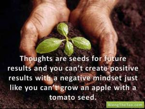 Thoughts are seeds for future results and you can't create positive results with a negative mindset just like you can't grow an apple with a tomato seed.